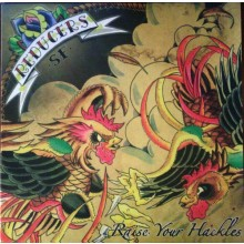 """Reducers SF - Raise Your Hackles 12""""LP  lim. 150 yellow/white splatter"""